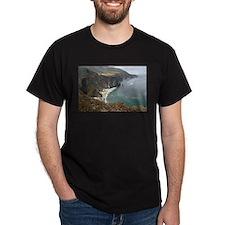 Rocky CA Coast T-Shirt