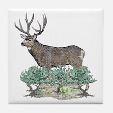 Buck watercolor art Tile Coaster