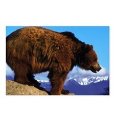 A Grizzly View Postcards (Package of 8)