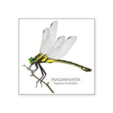 "Dragonfly Square Sticker 3"" X 3"""