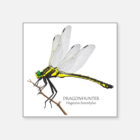 """Dragonfly Square Sticker 3"""" X 3"""""""