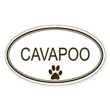 Oval Cavapoo Oval Bumper Stickers