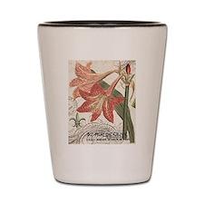 modern vintage winter garden amaryllis Shot Glass