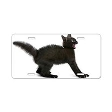 Real Scaredy Cat Aluminum License Plate