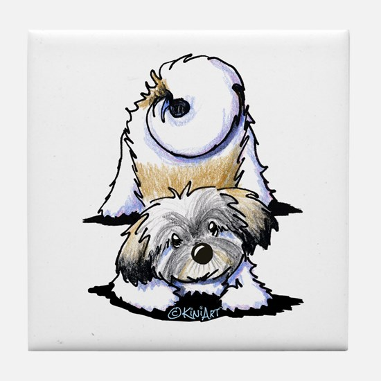 Playful Havanese Tile Coaster