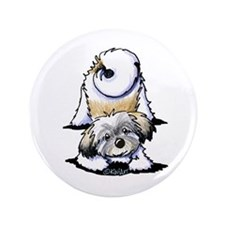 """Playful Havanese 3.5"""" Button (100 pack)"""