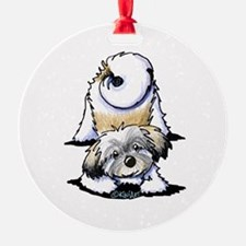 Playful Havanese Ornament