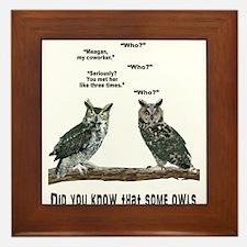 Not So Wise Old Owls Framed Tile