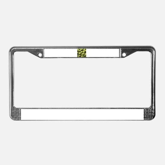 Softball Wallpaper License Plate Frame