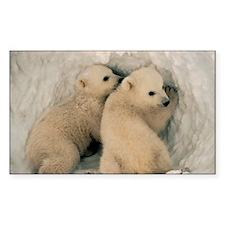 Polar Bear Cubby Decal
