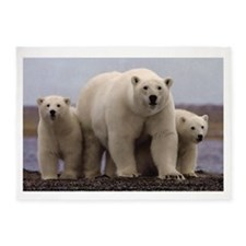 polar Bear Family 5'x7'Area Rug