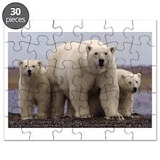 polar Bear Family Puzzle