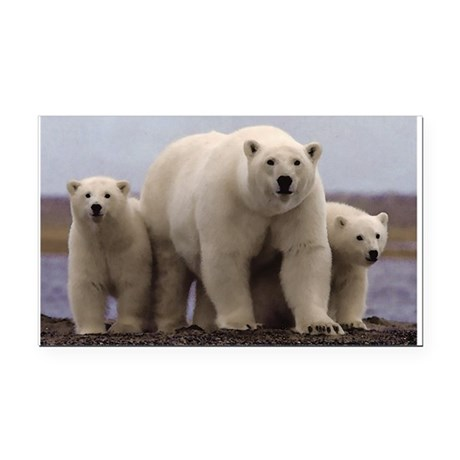 polar Bear Family Rectangle Car Magnet