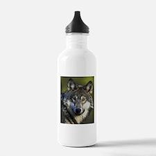Lone Grey Wolf Water Bottle