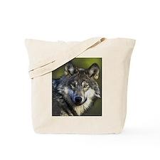 Lone Grey Wolf Tote Bag