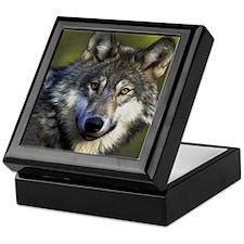 Lone Grey Wolf Keepsake Box