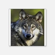 "Lone Grey Wolf Square Sticker 3"" x 3"""
