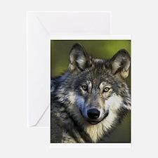Lone Grey Wolf Greeting Card