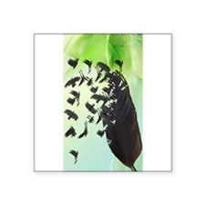 """Crow Feather Green Square Sticker 3"""" x 3"""""""