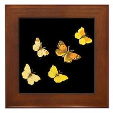Yellow Butterflies Framed Tile
