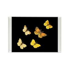 Yellow Butterflies Rectangle Magnet
