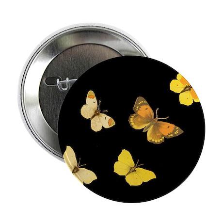 """Yellow Butterflies 2.25"""" Button"""