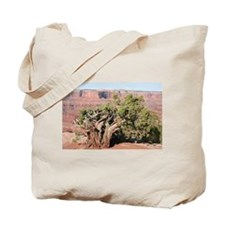 Dead Horse Point State Park, Utah, USA 9 Tote Bag