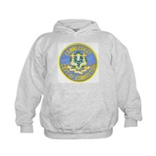 Connecticut Correction Hoodie