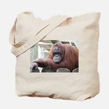 Orangutan: Strike a pose Tote Bag