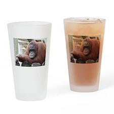 Orangutan: Strike a pose Drinking Glass