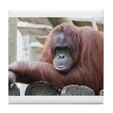 Orangutan: Strike a pose Tile Coaster