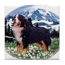 Bernese Mountain Dog Mug Tile Coaster