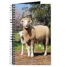 Square Image Ewe and Lamb Journal