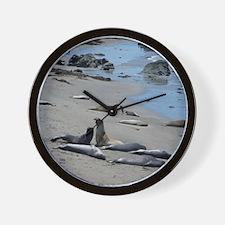 Elephant Seal Wall Clock
