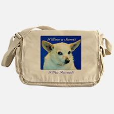 I Have A Secret! Messenger Bag