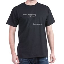 Mozart is decomposing T-Shirt