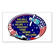 STS-101 Atlantis Decal
