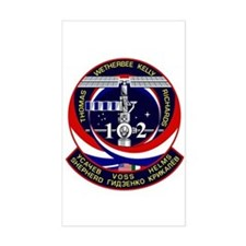 STS-102 Decal