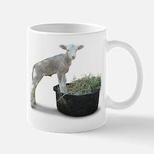 Ewephoric Dorset Lamb in a Tub Mug