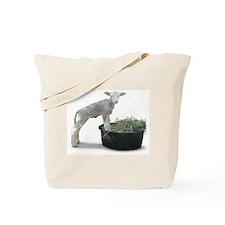 Ewephoric Dorset Lamb in a Tub Tote Bag