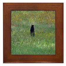Black bear standing Framed Tile