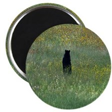 Black bear standing Magnet