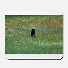 Black bear standing Mousepad