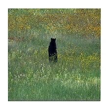 Black bear standing Tile Coaster