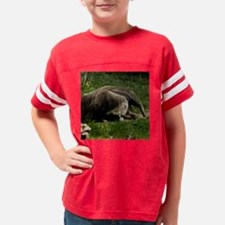 (15) Giant Anteater Youth Football Shirt