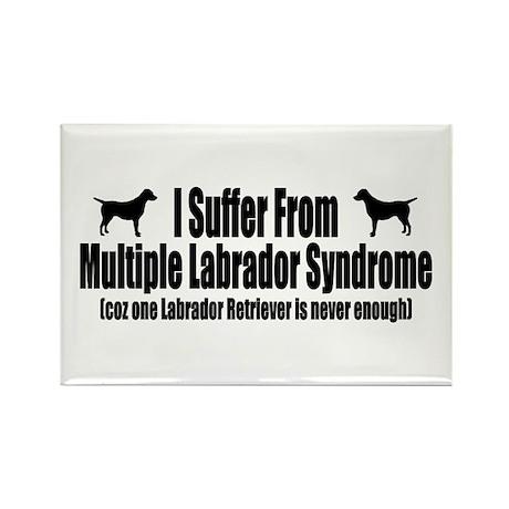 Labrador Retriever Rectangle Magnet (100 pack)