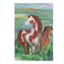 Horse And Colt Gift Postcards (Package of 8)