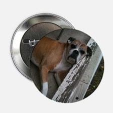"""Old Boxer 2.25"""" Button"""