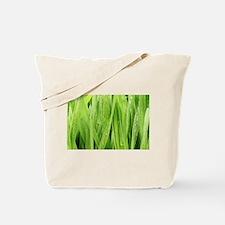 Close Up Grass After A Rainstorm Tote Bag