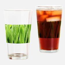 Close Up Grass After A Rainstorm Drinking Glass